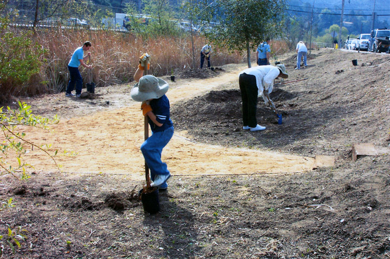 Efforts by volunteers and landowners would go far in carrying out the Laguna Canyon Creek Restoration Plan.